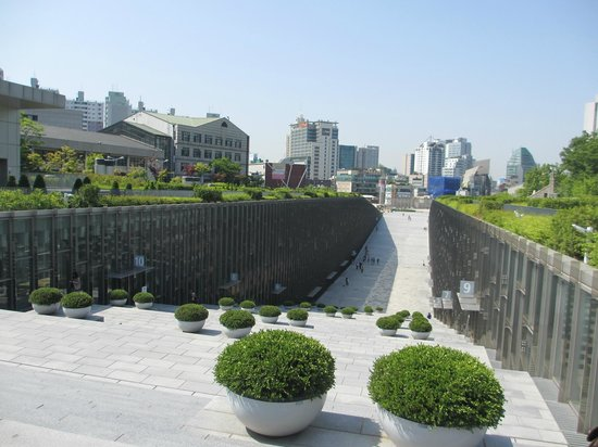 Ewha Womans University : pot of plants