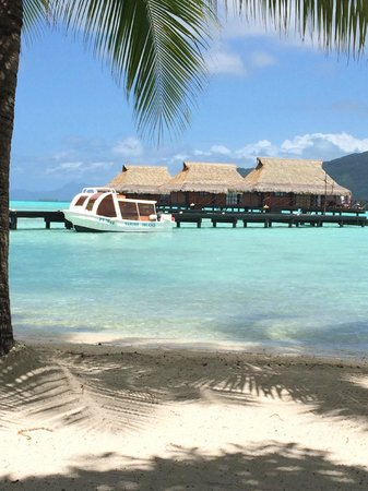 Vahine Island Resort & Spa : over water bungalows