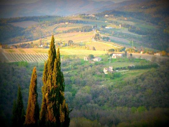 Castello di Verrazzano: The amazing views
