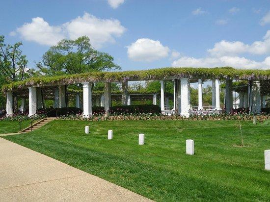 Arlington National Cemetery: precisosos paisajes