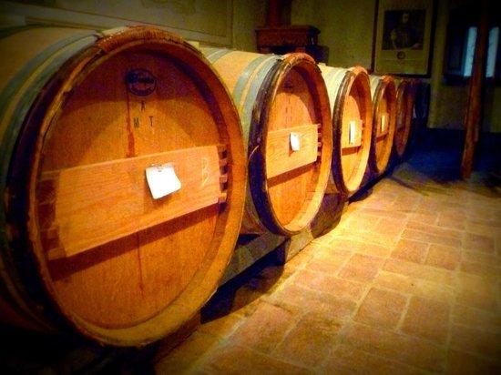 Castello di Verrazzano: The barrells