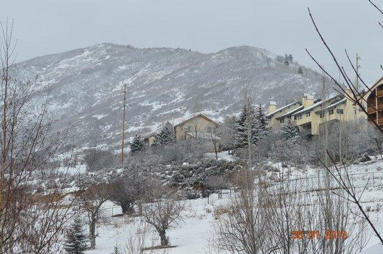 Zermatt Resort & Spa, A Trademark Collection Hotel: room view