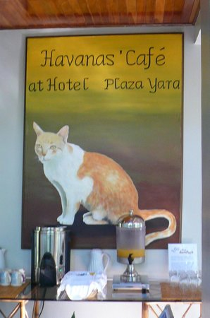 Hotel Plaza Yara: Havana Cafe (named after the resident kitty)