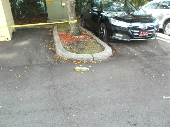 TownePlace Suites Miami Lakes: Bottle of urine in parking lot
