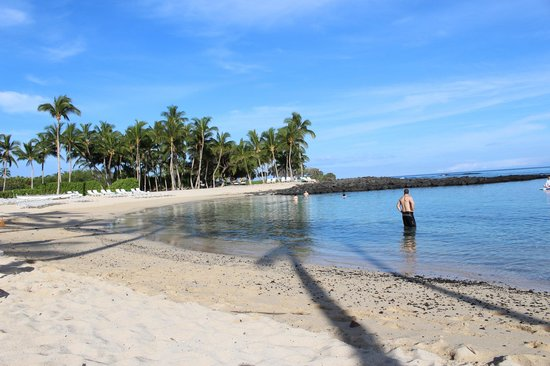 Fairmont Orchid, Hawaii : The beach in the morning