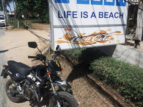 Discovery Dive Centre: life is a beach