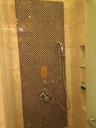 Sofitel Wanda Beijing: Rain Shower