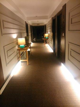 The Theodore Hotel: romantic or creepy hallway? i say its romantic
