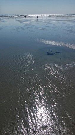 Ogunquit Beach : Low tide beauty