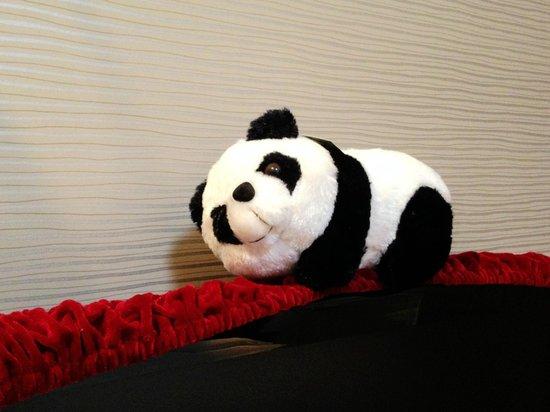 Chengdu Panda Apartment: Facilities