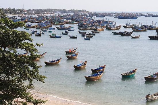 Муй-Не, Вьетнам: Fishing harbor in Mui Ne