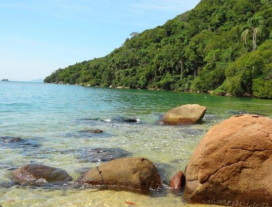 Estrela da Ilha: Praia de Freguesia de Santana, 25 minutos por trilha atrás da Pousada.