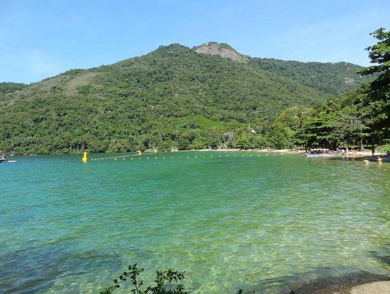 Estrela da Ilha: Vista do Local ( uma das fotos )