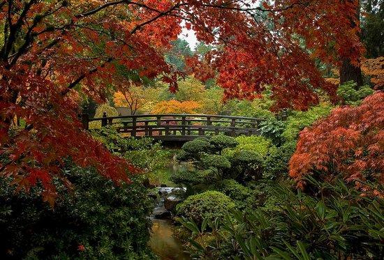 Portland Japanese Garden: Autumn in the Gardens
