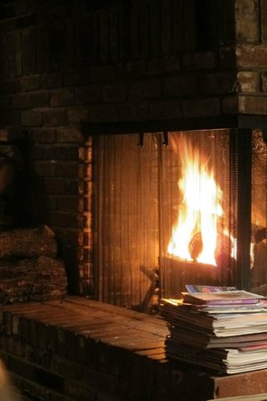Shaw's Oceanfront B&B : Using fireplace is encouraged.