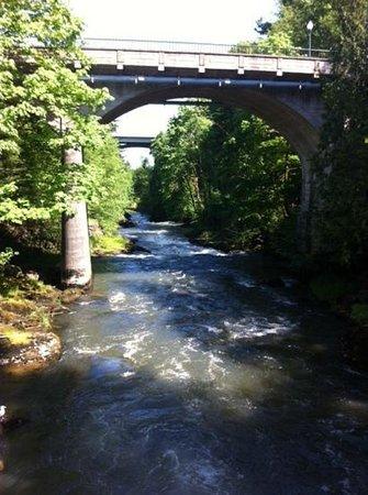 Tumwater Falls Park: Down River