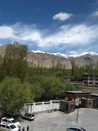 The Grand Dragon Ladakh : from Hotel Room