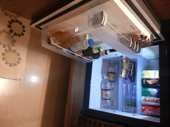 Crowne Plaza Chennai Adyar Park: Mini bar
