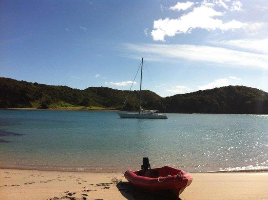 Bay of Islands Sailing/Gungha II: Gungha II