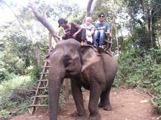 Ride On An Elephant : Rin Ra [my Cambodia Tour Guide] and me.