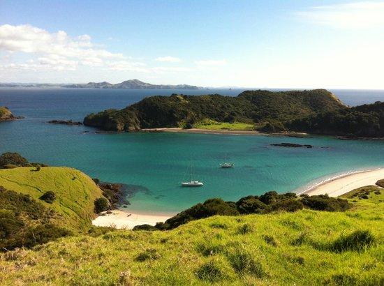 Bay of Islands Sailing/Gungha II: View from the island walk