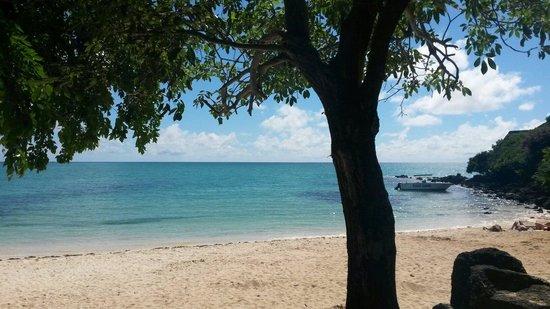 La Cuvette Beach : Praia