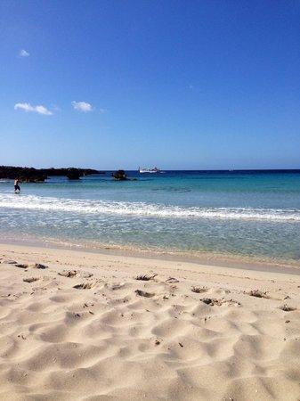 Hotel Apartamentos Princesa Playa: Son Xoriguer