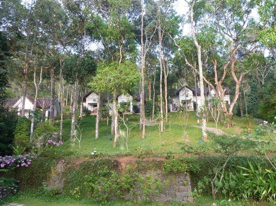 Niraamaya Retreats Cardamom Club - Thekkady : Vue du jardin et des bungalows