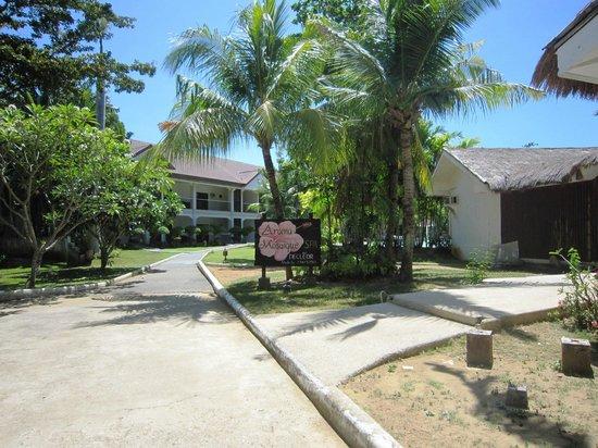 Pacific Cebu Resort : 客房建築-1