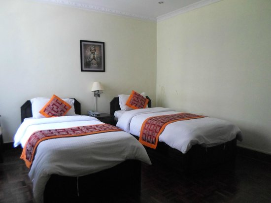 Hotel Encounter Nepal : super deluxe twin room with bathroom