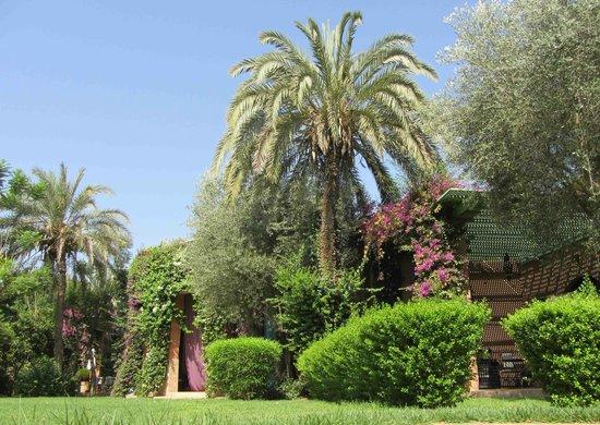 Dar Zemora : Grounds
