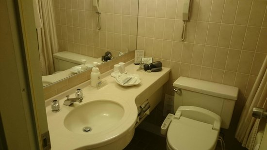 Narita Tobu Hotel Air Port : バスルーム