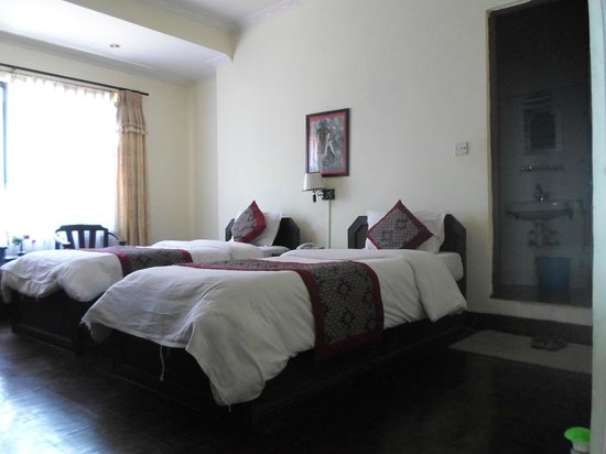 Hotel Encounter Nepal: super deluxe twin room with bath room garden view