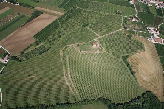Dolegna del Collio, Italy: Cà Ronesca