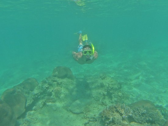 Paradise Cove Resort: Snorkeling
