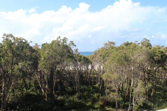 Anchorage on Straddie Beachfront Island Resort: Beach view