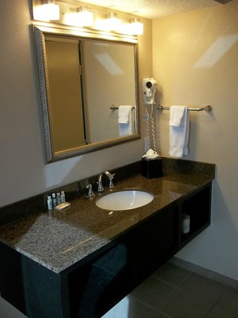 Holiday Inn Metairie New Orleans Airport: Aspecto del baño
