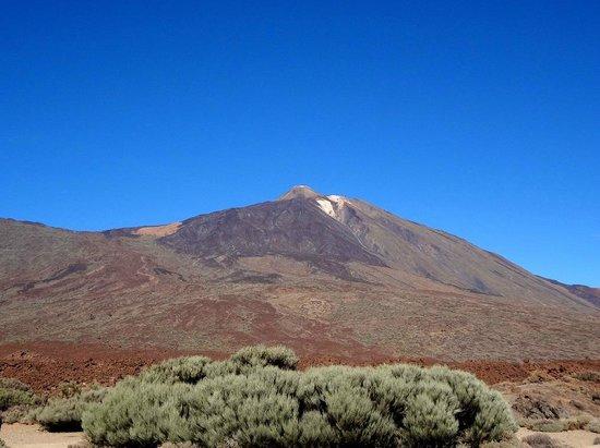 Volcan El Teide : Тейде