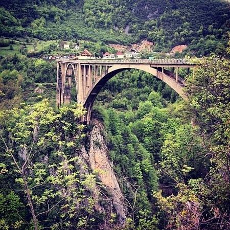 Tara Bridge : мост