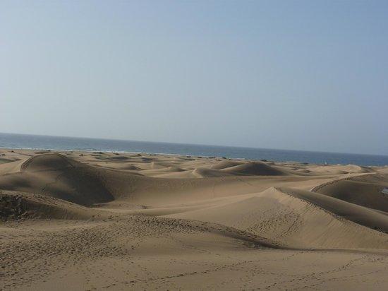 Dunas de Maspalomas: les dunes....