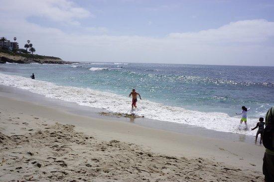 La Jolla Shores: La Jolla 1