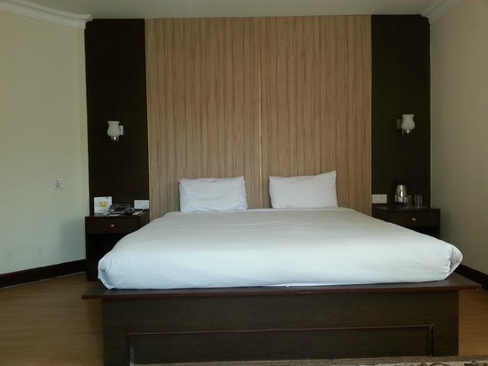 Hotel Vaishali: Picture of Suite Room 3107