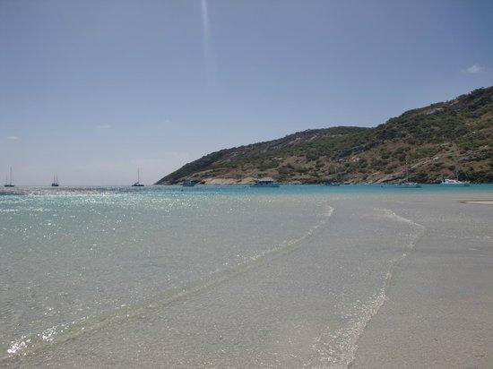 Lizard Island Resort: Spiaggia