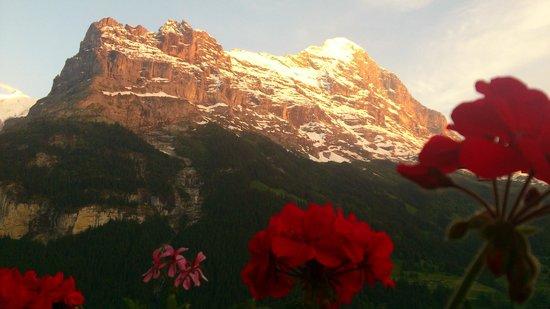 Parkhotel Schoenegg: Aussicht auf die Bergwelt