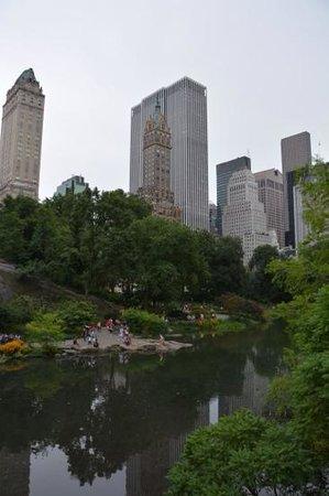 Central Park: Skyline from the park