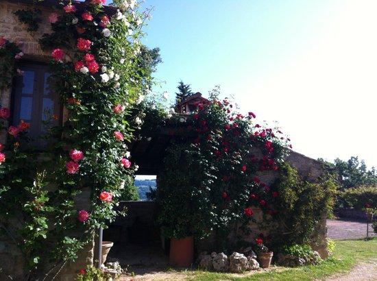 Fortezza de'Cortesi: the stone oven with roses