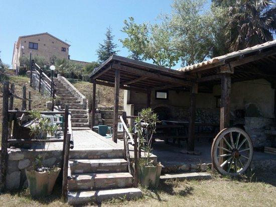 Agriturismo Fassi: Zona pic nic con barbecue