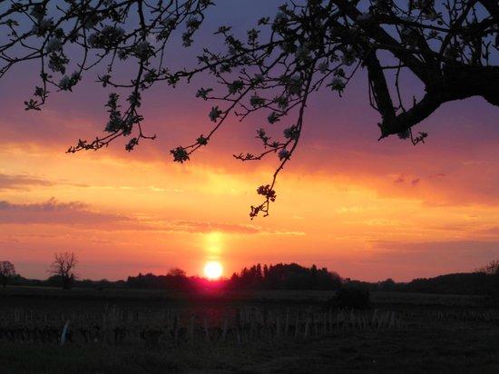 Coucher de soleil sur la campagne environnate picture of - Les chambres a coucher ...