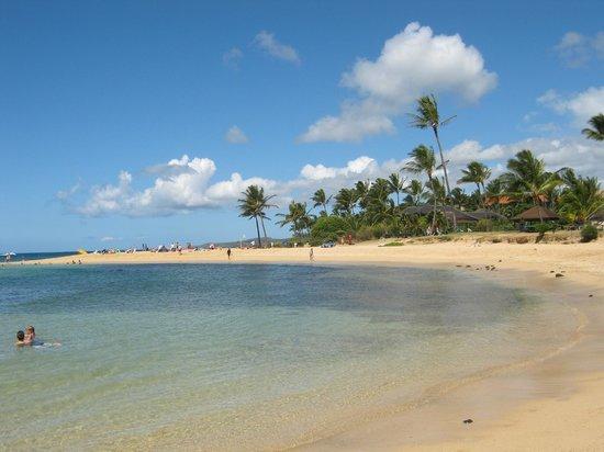Koa Kea Hotel & Resort: Poipu Beach in front of resort