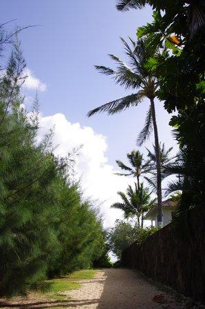 Lanikai Beach : 大きな家との間にある路地の先に…